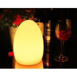Egg shaped table lamp