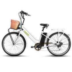 Electric Bicycle With USB Charger