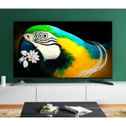 65 Inch LCD Television