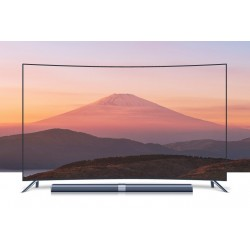 65 Inch Wall Mount LCD Television